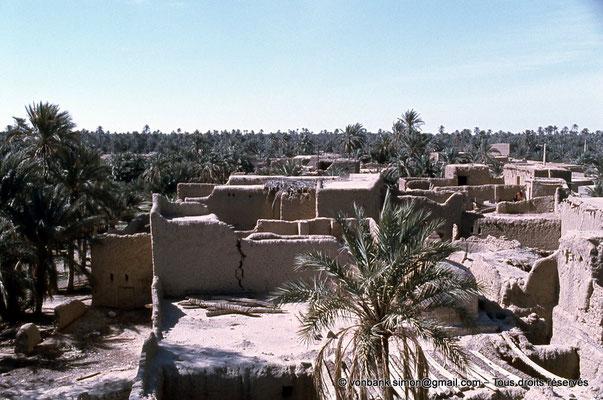 [021-1979-11] Sidi Okba