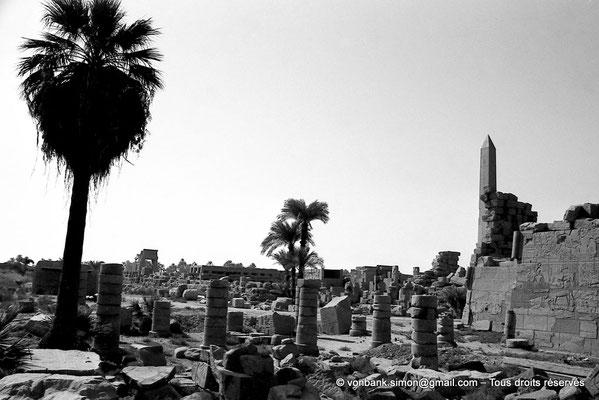 [NB075-1973-32] Karnak - Trésor de Chabaka : Colonnade perpendiculaire au mur Nord de la salle hypostyle - En arrière-plan, la porte Est de Nectanébo Ier et l'Akh-menou