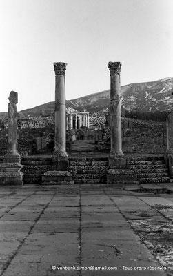 [NB037-1978-27] Djemila (Cuicul) : Forum - Derrière la colonnade Sud, le Temple Septimien