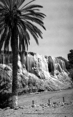 [NB017-1981-14] Hammam Meskoutine (Aquae Thibilitanae) : Cascade pétrifiée