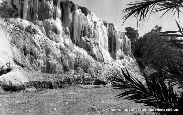 [NB017-1981-16] Hammam Meskoutine (Aquae Thibilitanae) :  Cascade pétrifiée
