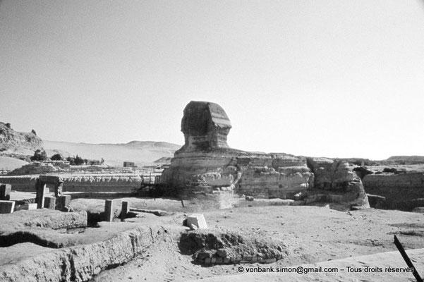 [083-1973-22] Gizeh - Grand sphinx : Le Sphinx fait face à l'Est (et aujourd'hui à la ville toute proche)