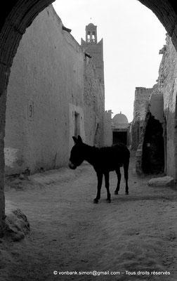 [NB050-1978-07] Temacine-Tamelhat - Rue de la mosquée de Si El Hadj Temacine