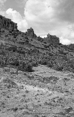 [NB018-1981-04] Massif de l'Aurès
