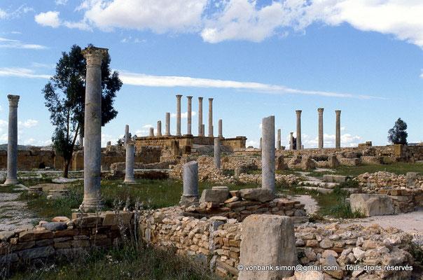 [062-1983-96] Henchir Kasbat (Thuburbo Majus) : Maisons romaines - En arrière-plan, le forum puis le Capitole