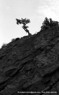 [NB053-1978-36] Massif de l'Aurès