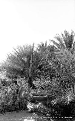[NB091-1978-26] El Oued