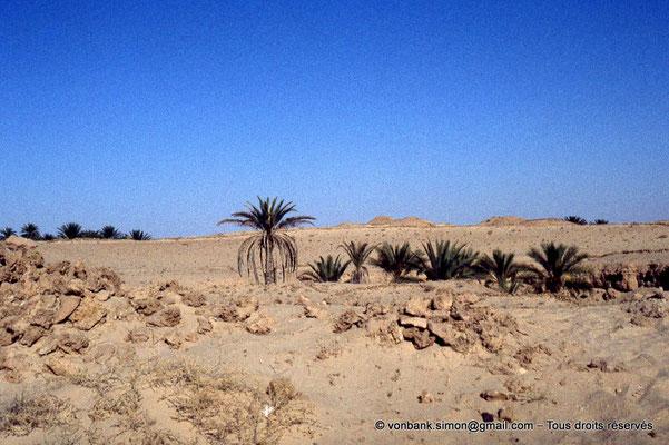 [044-1978-37] El Oued