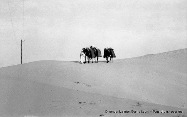 [NB088-1978-06] Touggourt : Caravane dans le désert