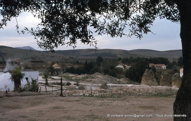 [018-1978-30] Hammam Meskoutine (Aquae Thibilitanae) : Cônes de pierre (noce pétrifiée)