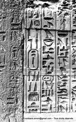 [NB085-1981-49] Saqqara - Teti I : Hiéroglyphes avec le cartouche de Teti I (Détail extérieur)