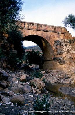 [006-1983-17] Sidi Ali-Bel-Kassem (Thuburnica) : Grand pont sur l'oued el Enja