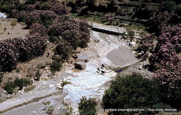[041-1978-13] Massif de l'Aurès