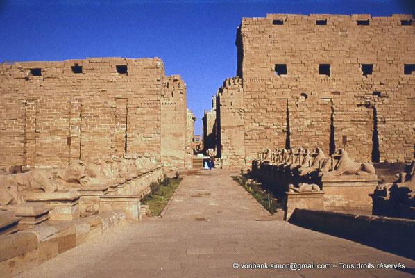 [082-1973-70] Karnak - Parvis du Temple : Dromos avec sphinx à tête de bélier - En arrière-plan, le premier pylône