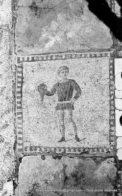 [NB011-1981-06] Carthage (Carthago) : Mosaïque des chevaux - Sparsor avec une cruche à la main