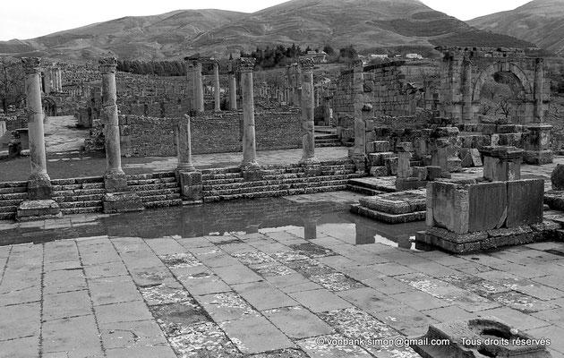 [NB033-1978-23] Djemila (Cuicul) : Forum - Partie droite de la colonnade Sud - En arrière, Temple de Venus Genetrix et Arc du cardo maximus