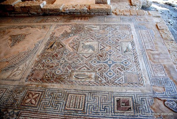[NU900-2012-008] Kourion (Curium) : Maison d'Eustolios - Grand panneau de mosaïques au sol représentant des symboles chrétiens (croix, poisson, …)