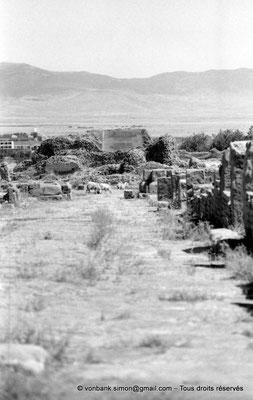 [NB091-1978-14] Timgad (Thamugadi) : Accès aux ruines des grands thermes de l'Est