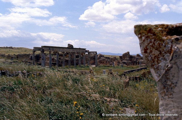 [009-1985-04] Henchir Kasbat (Thuburbo Majus) : Portique de la Palestre des Petronii