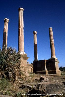 [010-1978-11] Timgad (Thamugadi) : Porte de Mascula (extrémité Est du Decumanus maximus)