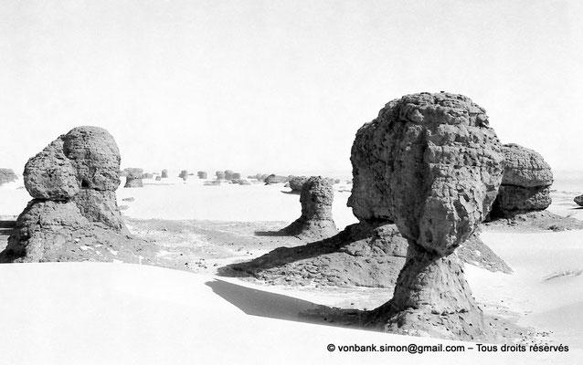 [NB101-1980-116] DZ - Tamanrasset - Hoggar