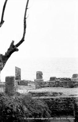 [NB039-1978-08] Tipasa de Maurétanie : Cardo