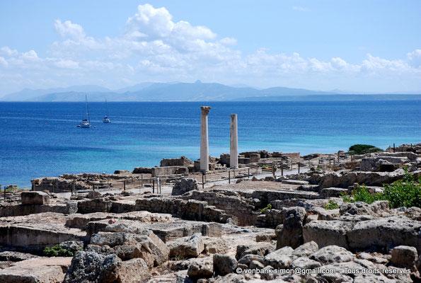 [NU904-2015-215] Tharros (Sardaigne) : Temple tétrastyle dont il ne reste que deux colonnes