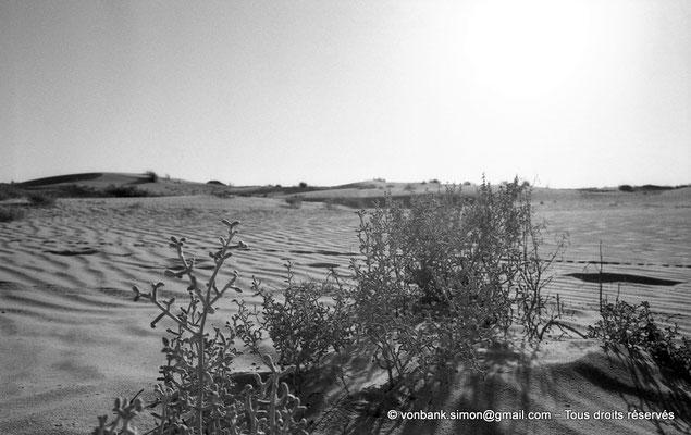 [NB091-1978-37] El Oued