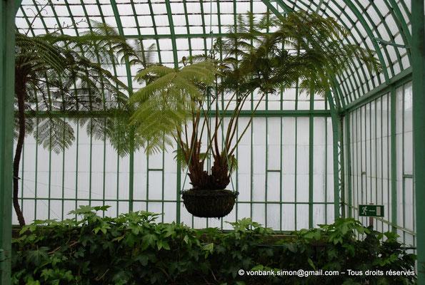 [NU900c-2012-0177] B - Bruxelles - Laeken : Serres royales