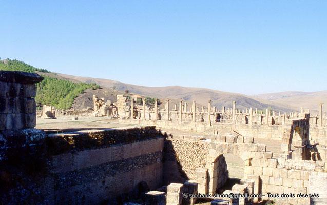 [001-1983-37] Djemila (Cuicul) : Place des Sévères (Nouveau forum) - Colonnade du portique Nord (vue prise depuis le podium du temple septimien)