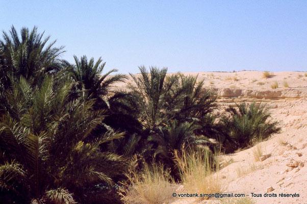 [044-1978-15] El Oued