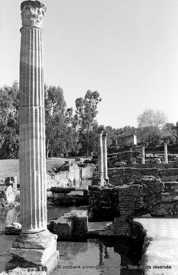 [NB028-1978-07] Annaba (Hippo Regius) : Quartier des villae du front de mer