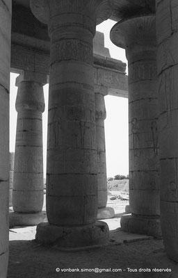 [NB086-1981-21] Ramesseum : Salle hypostyle