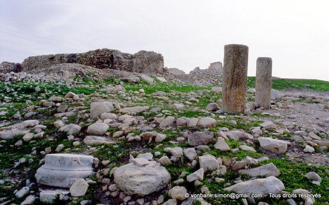 [003-1983-25] Djama/Zama (Zama Major) : Ruines