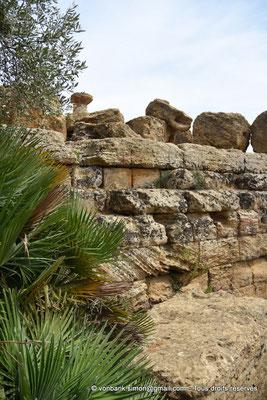 [NU906-2019-1584] Agrigente - Temple d'Héraclès (Hercule) : Haut de colonne de la face Sud (vue depuis le côté Ouest du temple)