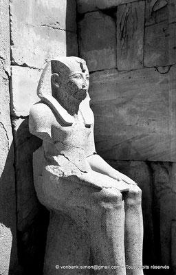 [NB078-1973-36] Karnak - Ipet-Sout : Amenhotep II (cour axiale, pylône V)