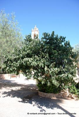 [NU900-2012-0151] Agia Napa : Clocher du monastère