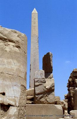 [068-1981-21] Karnak - Ouadjyt : Obélisque Nord situé devant l'entrée du pylône V (Hatchepsout)