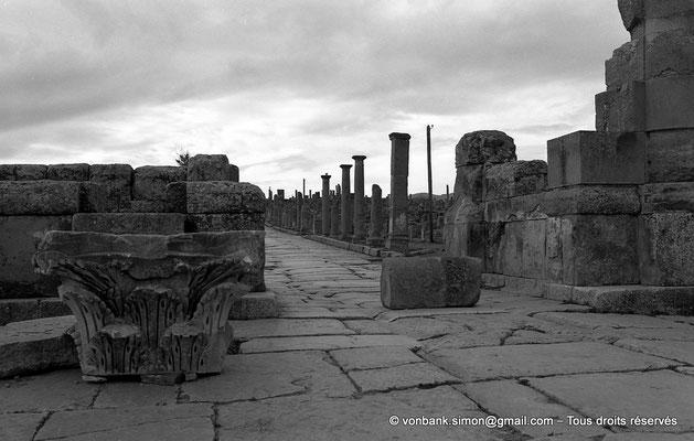 [NB042-1978-17] Timgad (Thamugadi) : Porte principale Nord, avec l'assise de ses deux pieds-droits, ouvrant sur le cardo