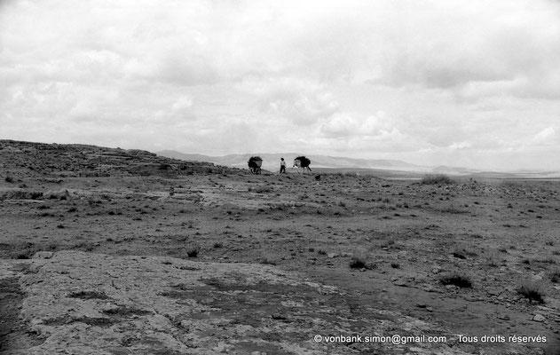 [NB089-1978-05] Massif de l'Aurès