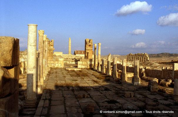 [007-1983-38] Haïdra (Ammaedara) : Église de l'évêque Melleus -Basilique I- En arrière-plan, l'unique colonne du temple tétrastyle et, sur la droite, l'édifice à fenêtres