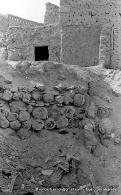 [NB050-1978-41] Temacine-Tamelhat - Fondations et troncs de palmiers