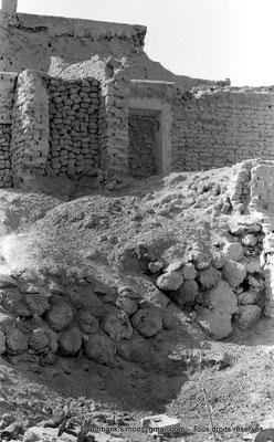 [NB050-1978-43] Temacine-Tamelhat - Fondations et troncs de palmiers