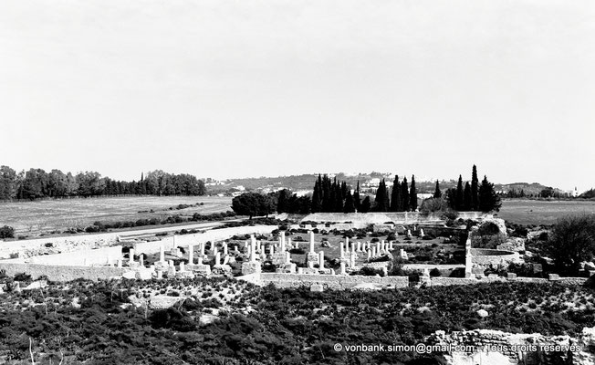 [NB016-1981-11] Carthage (Carthago) : Damous el Karita