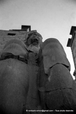 [NB079-1973-02] Louxor - Temple d'Amon-Rê : Colosse assis (Ramsès II)