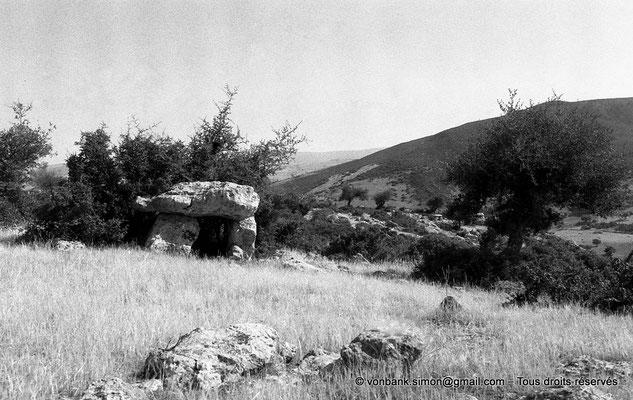 [NB017-1981-20] Roknia : Oliviers et dolmen
