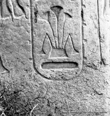 [NB074-1973-78] Louxor - Temple d'Amon-Rê : Hiéroglyphes