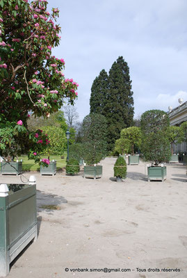 [NU900c-2012-0040] B - Bruxelles - Laeken : Serres royales - Accès au jardin d'hiver
