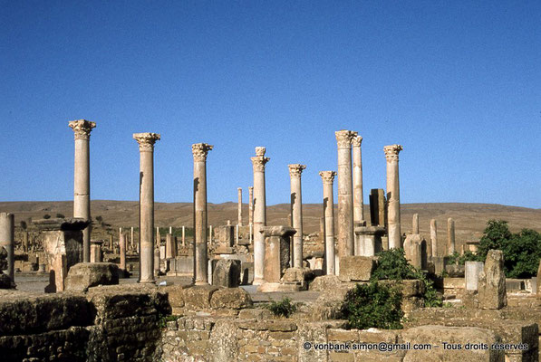 [010-1978-09] Timgad (Thamugadi) : Forum - Front Nord : Colonnade
