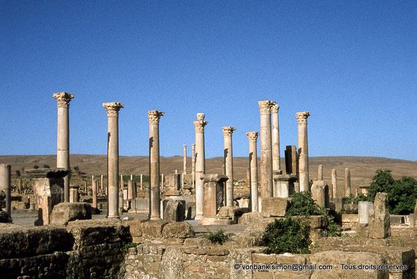 [010-1978-09] Timgad (Thamugadi) : Forum - Front Nord : Portique